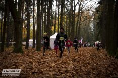 Forest Race 12.11. 2016